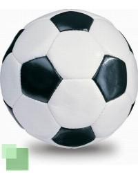mic_fotbalovy